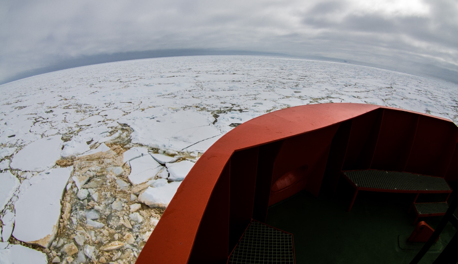 Brown algae colored sea ice off the bow of the R/V Gould