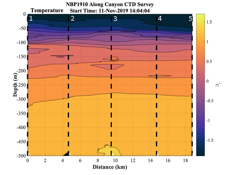 Profiles of temperature from a Palmer Canyon CTD survey