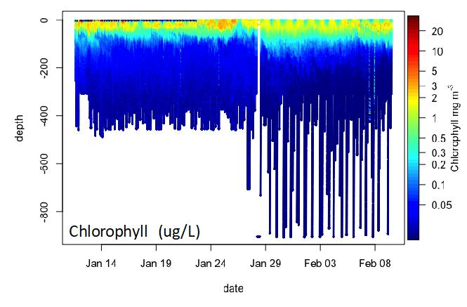A graph of underwater chlorophyll profiles collected by a glider in Antarctica.